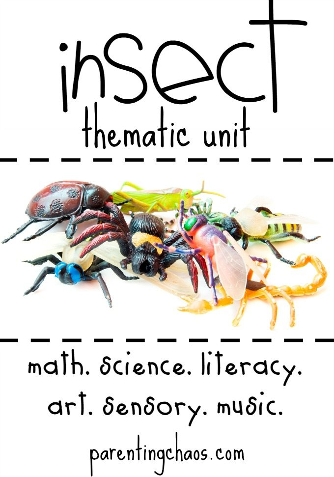 Insect Activities for Kids