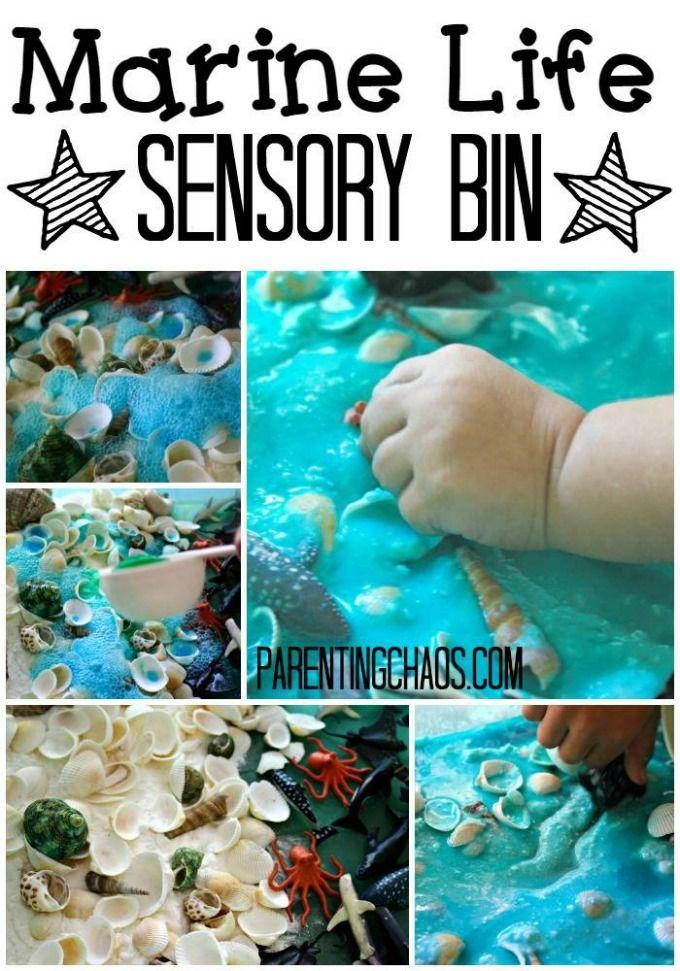 Marine Life Sensory Bin- A Bubbly Small World!