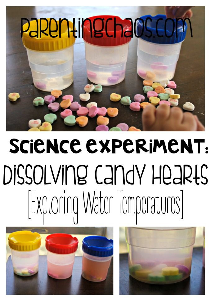 Melting Hearts! Dissolving Conversation Hearts Science Experiment