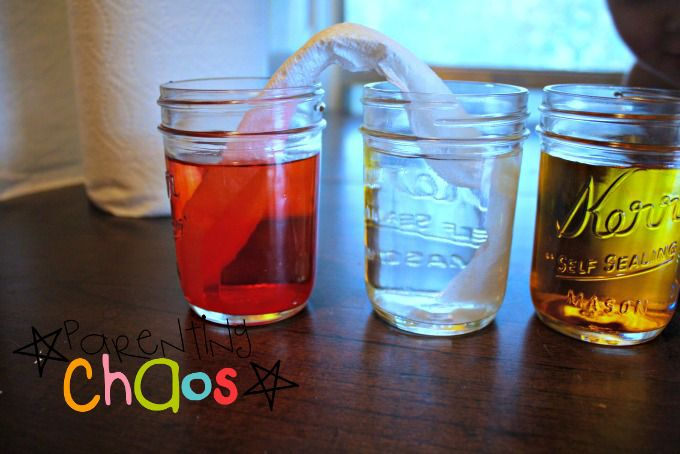 Crawling Colors! Color Mixing Science Experiment: Fold a Paper Towel and Dip Each End into Cup