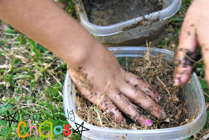 Dinosaur Nests Mixing Mud and Grass