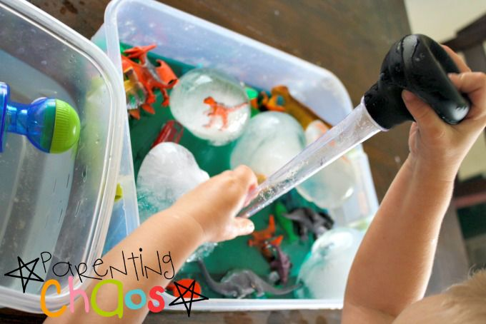 Adding Salt Water to Dinosaurs in Ice Eggs