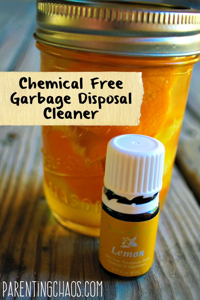 DIY Chemical Free Garbage Disposal Cleaner