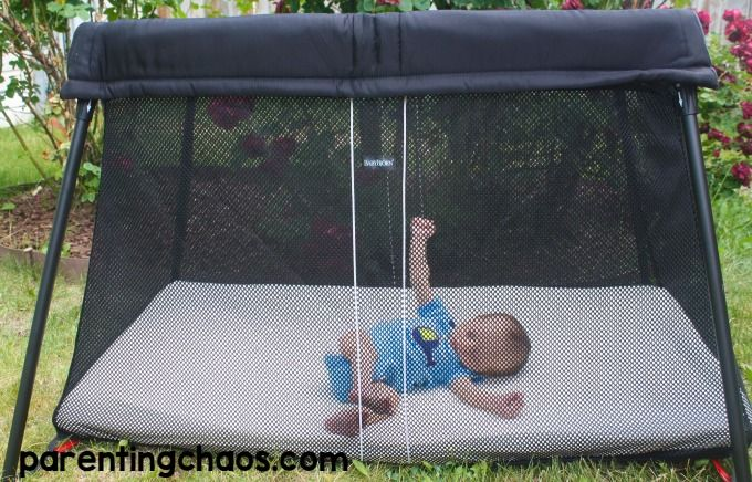 travel between crib and differences guava baby now lotus for light family cribs bjorn the