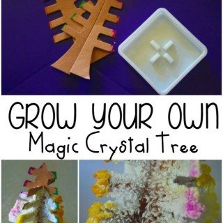 How to Grow Your Own Magic Crystal Tree