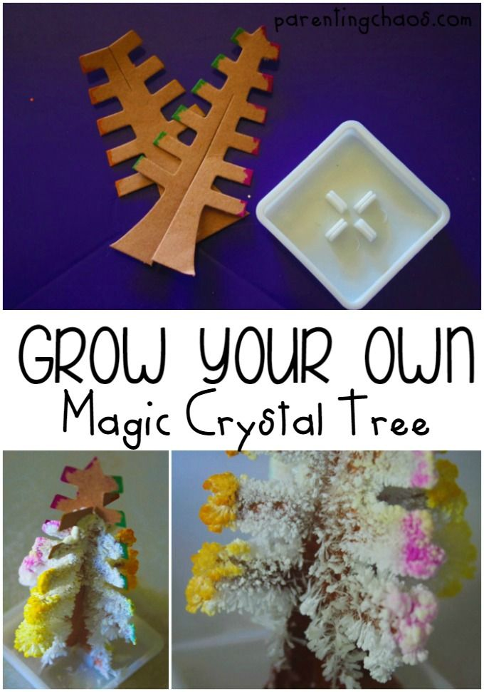 3c12f7d75ed5bc How to Grow Your Own Magic Crystal Tree!