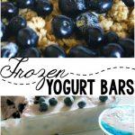 Frozen Yogurt Bars