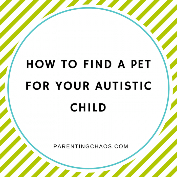 How a Shelter Dog Can Help Your Child with Autism