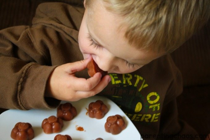 Frozen Baby Food Bites are a Healthy Snack that Your Toddler will LOVE!