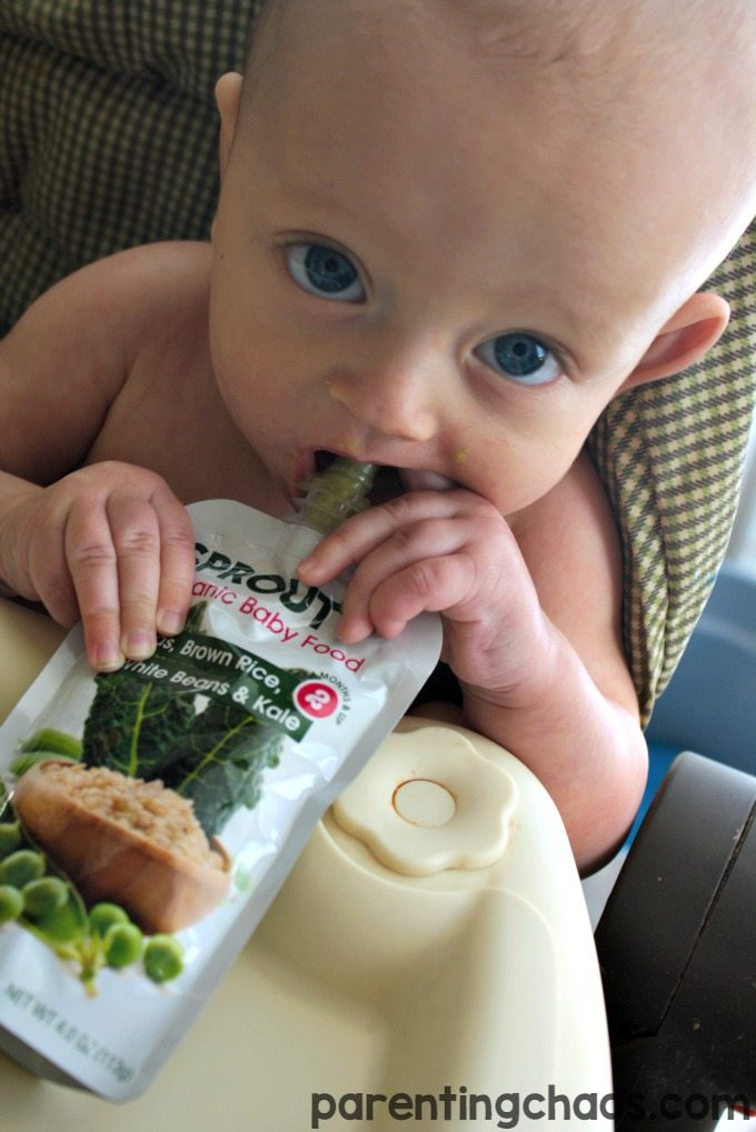 Sprout® Organic baby/toddler food is USDA Certified Organic