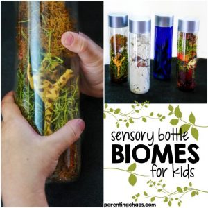 These Sensory Bottle Biomes are a fun, yet simple way for kids to explore what makes up a biome and to compare how various plant and animal life has adapted to fit that biome.