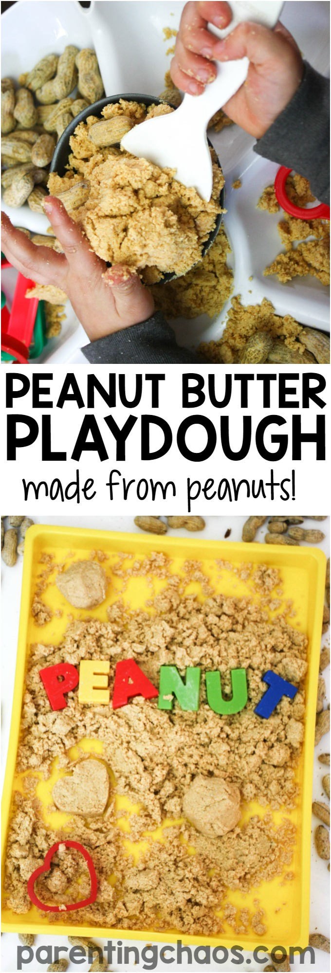 Kids will have a blast learning how to make peanut butter as they create this fantastic sensory recipe - Peanut Butter Playdough! I had no clue that you could make this from scratch so easily!