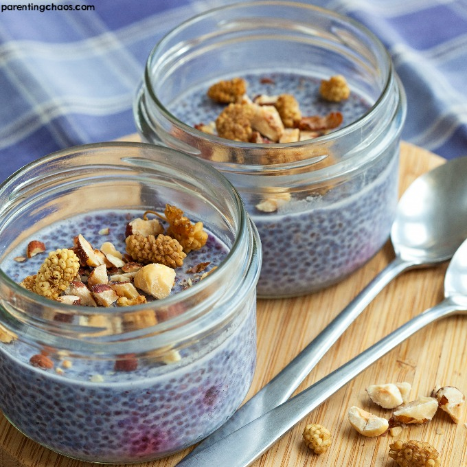 This Vanilla Blueberry Chia Pudding is hands down one of the easiest breakfasts I have ever made. This easy breakfast recipe is packed with protein, fiber, and antioxidants, plus it tastes just like a dessert!