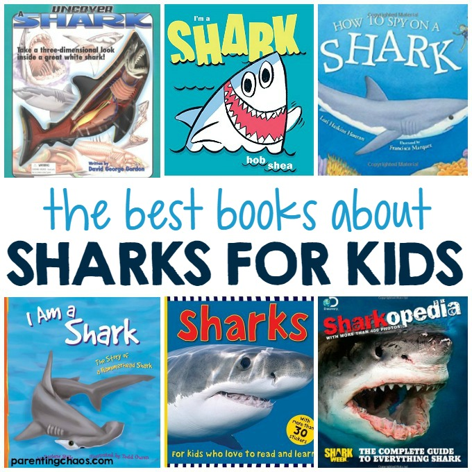 Best Books About Sharks