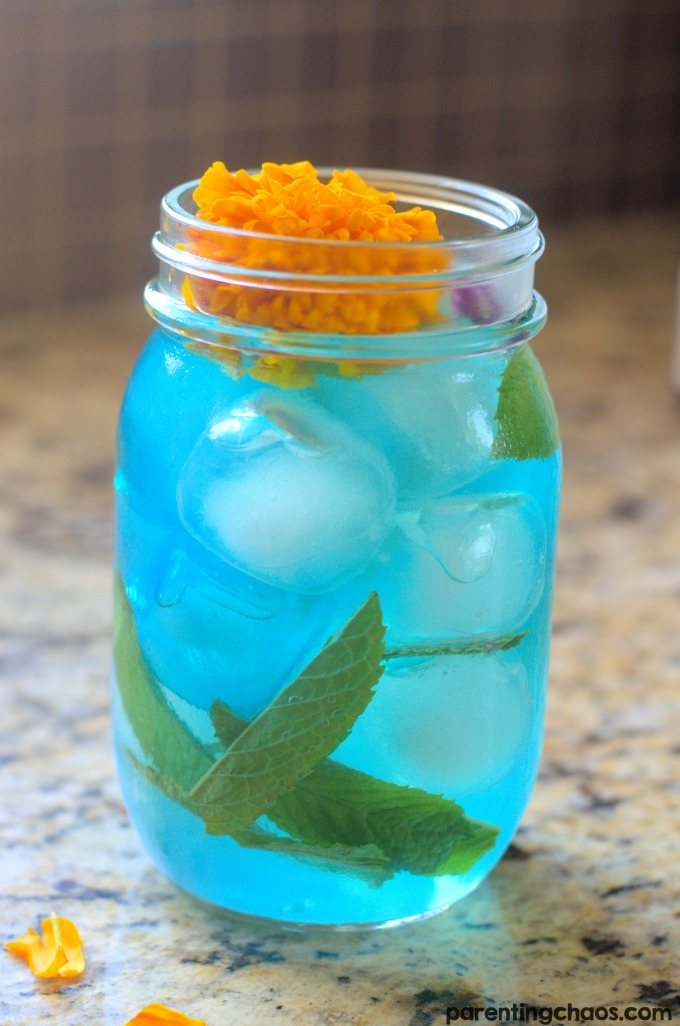 This Pokémon Power Up Bulbasaur Punch is the perfect way to recharge your batteries after a fun afternoon of catching Pokémon!