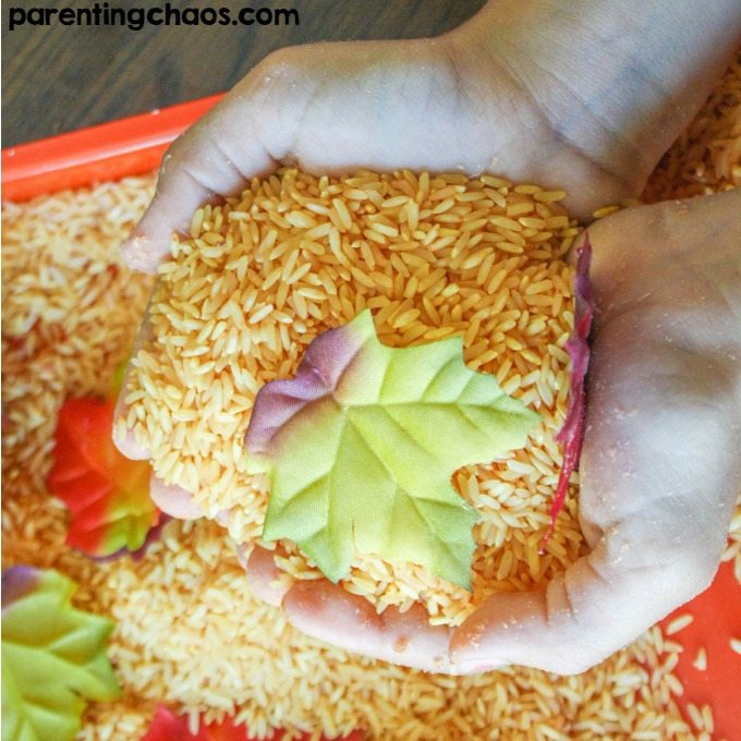 Pumpkin Scented Sensory Rice