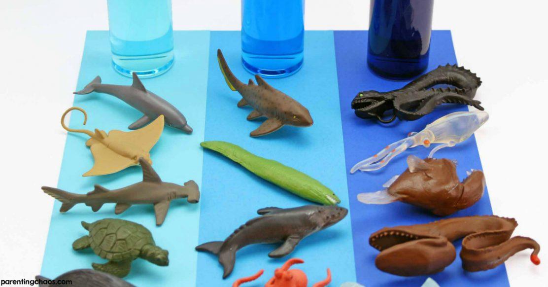 Ocean Zones Sensory Bottles